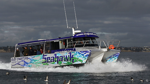 Seahawk fishing charters limited auckland new zealand for Fishing charters auckland